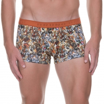 bruno banani hipshort hip short hipster herren unterhose multicolour TIGER PARADE